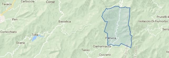 Palneca ccpot