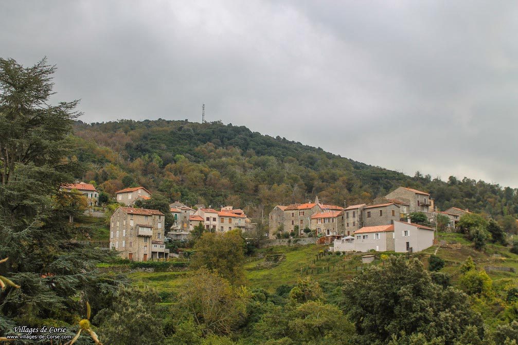 Village frasseto 1009